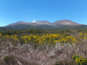 and past Mount Ngauruhoe in the Tongariro National Park