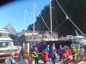 The Milford Mariner- our sightseeing boat
