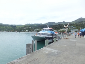 The wharf at Akaroa