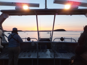 Sailing at dawn on our pelagic bird trip